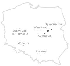 Mapa oddziałów Zagłoba 2 Drewno Egzotyczne